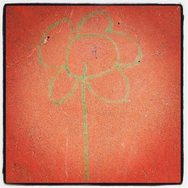 FLOWER SABI