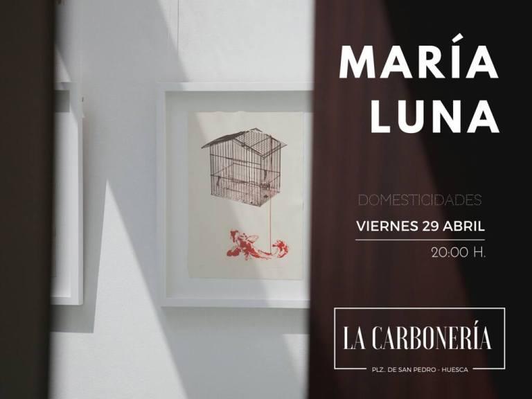 DOMESTICIDADES BY MARIA LUNA