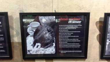 EL SABOR DE LA LUZ EN ÁGORA 2