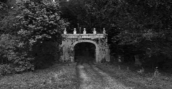 La puerta del bosque by Miguel  Ortega