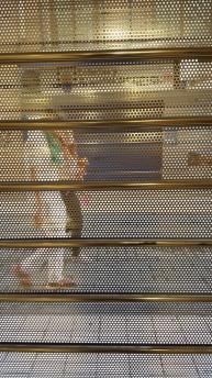 Fiestas de San Lorenzo 2016 Encarcelado (3) Fernando Momprade