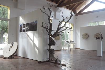 la-memoria-de-los-arboles-en-el-jardin-botanico-de-valencia-miguel-ortega-2