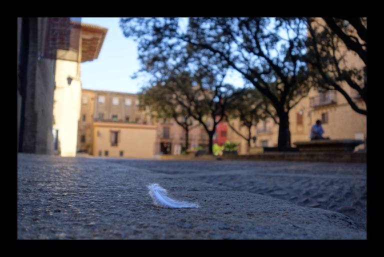 pluma-en-la-plaza-by-tono-vicen