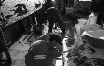 la-pesca-by-alfonso-de-castro-5