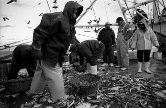 la-pesca-by-alfonso-de-castro-6