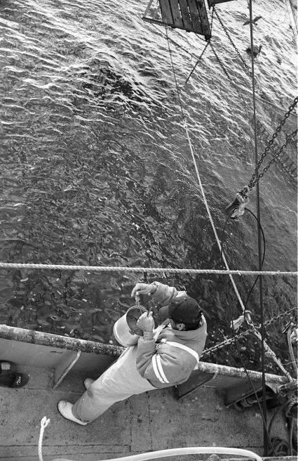 la-pesca-by-alfonso-de-castro-7