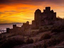 un-olivoun-castillo-y-la-noche-by-juan-brioso-2