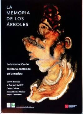 LA MEMORIA DE LOS ARBOLES BY MIGUEL ORTEGA 1