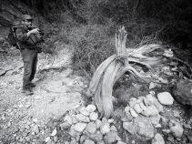 MAKING OF LA MEMORIA DE LOS ARBOLES BY MIGUEL ORTEGA 10