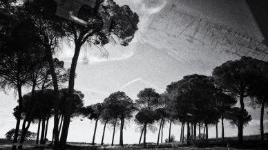 EN UN LUGAR DE LA MANCHA BY DOMINIQUE LEYVA 4