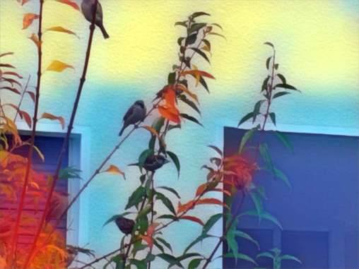 THE BIRDS BY EVA-MARIA KÜHNE-WEHRMANN 1