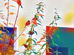 THE BIRDS BY EVA-MARIA KÜHNE-WEHRMANN 3