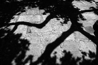 SABOREANDO SORIA BY DOMINIQUE LEYVA 17
