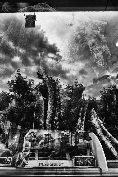 SABOREANDO SORIA BY DOMINIQUE LEYVA 41