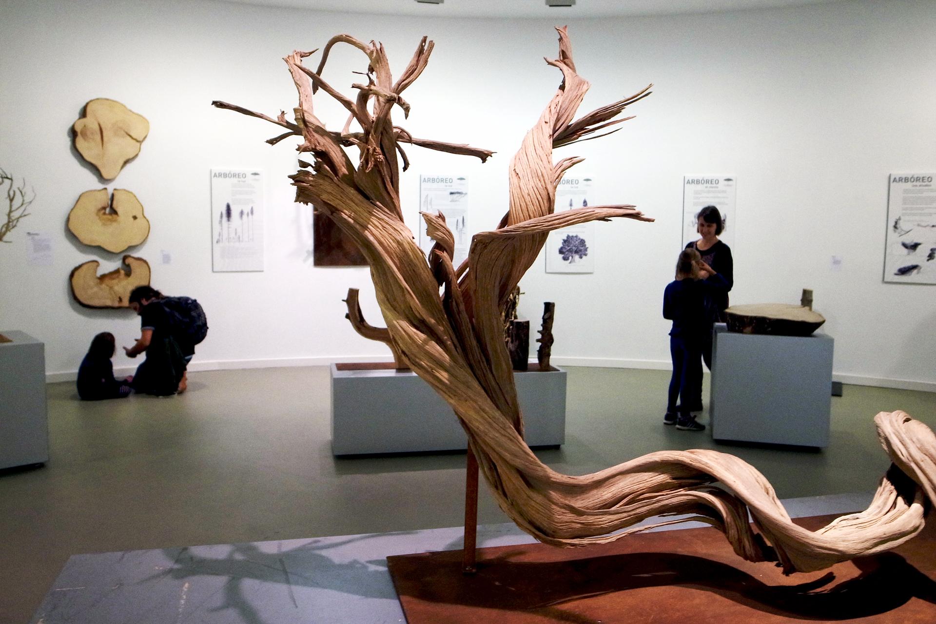 Exposición Arboreo.