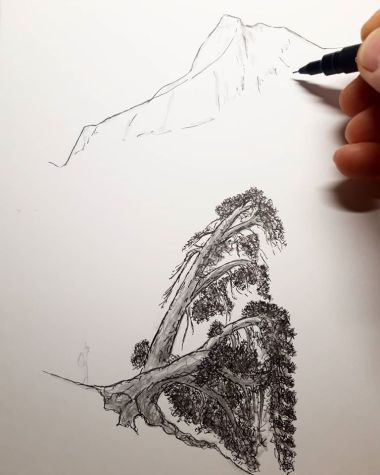 Árbol n°8, pino negro by Miguel Ortega