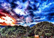 Compartiendo la primavera desde mi privilegiada atalaya by Victor Santolaria 6